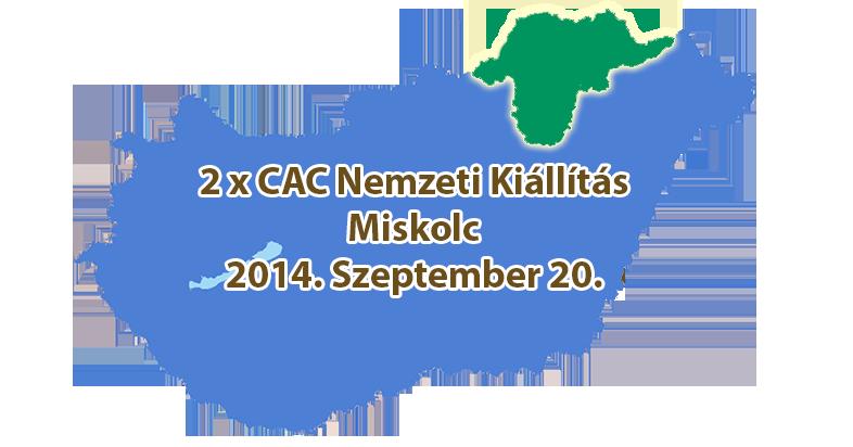 2 x CAC Nemzeti Kiállítás – Miskolc – 2014. Szeptember 20.