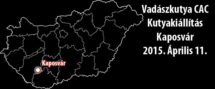 Vadászkutya CAC Kutyakiállítás – Kaposvár – 2015. Április 11.