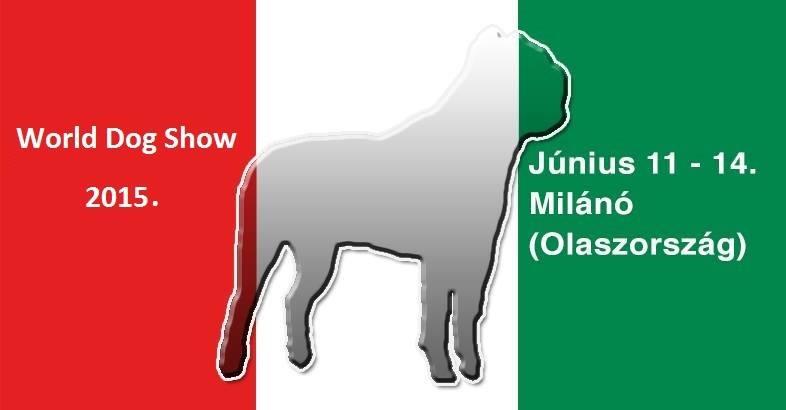 A World Dog Show 2015-ben Olaszországba várja a legszebb kutyákat