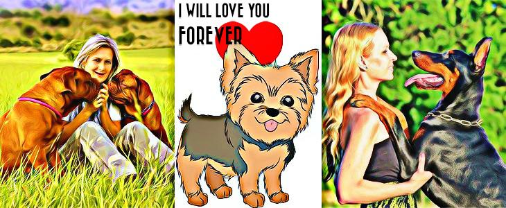 13 jel, melyből tudod, hogy a kutyád nagyon szeret