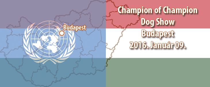 Champion of Champion Dog Show – Budapest – 2016. Január 09.