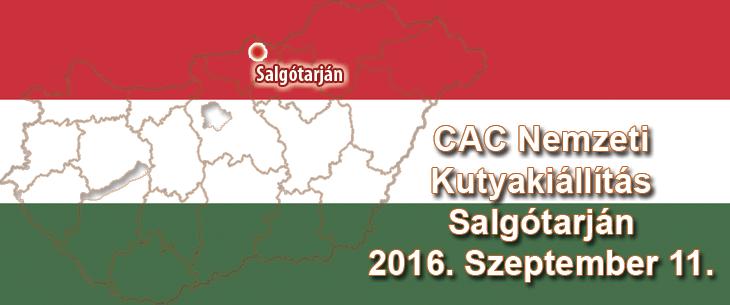 CAC Nemzeti Kutyakiállítás – Salgótarján – 2016. Szeptember 11.
