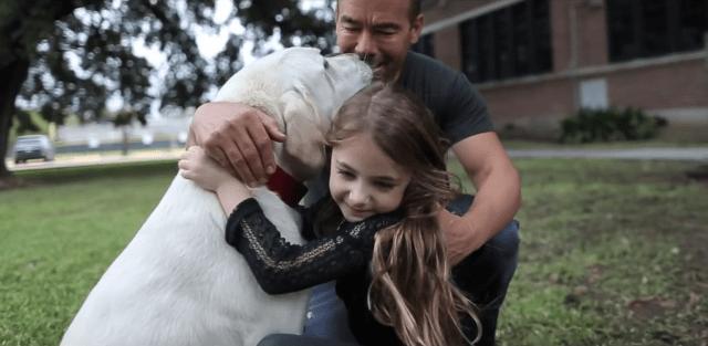 Ha beszélni tudnék…egy kutya élete gondolatokban