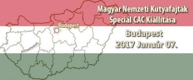 Magyar Nemzeti Kutyafajták Speciál CAC Kiállítása – Budapest – 2017. Január 07.