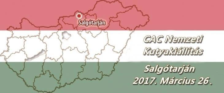 CAC Nemzeti Kutyakiállítás – Salgótarján – 2017. Március 26.