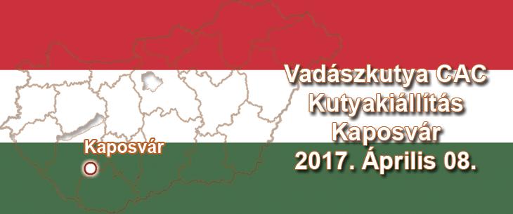 Vadászkutya CAC Kutyakiállítás – Kaposvár – 2017. Április 08.