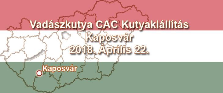 Vadászkutya CAC Kutyakiállítás – Kaposvár – 2018. Április 22.
