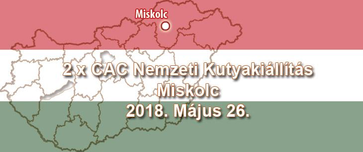 2 x CAC Nemzeti Kutyakiállítás – Miskolc – 2018. Május 26.