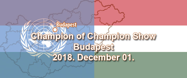 Champion of Champion Show – Budapest – 2018. December 01.