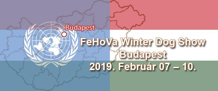 FeHoVa Winter Dog Show – Budapest – 2019. February 07 – 10.