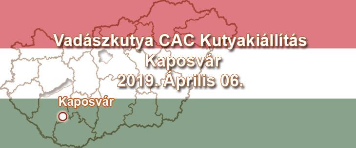 Vadászkutya CAC Kutyakiállítás – Kaposvár – 2019. Április 06.