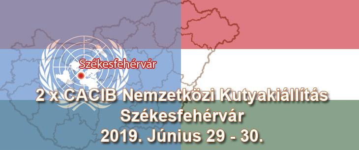 2 x CACIB Nemzetközi Kutyakiállítás – Székesfehérvár – 2019. Június 29 – 30.