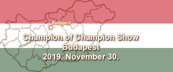 Champion of Champion Show – Budapest – 2019. November 30.