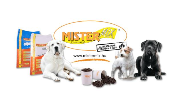 A Mister Mix Dog, avagy a siker útja
